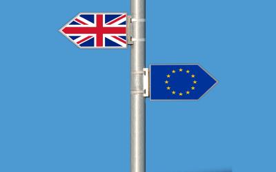 크기변환_brexit